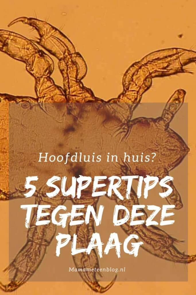 hoofdluis mamameteenblog.nl