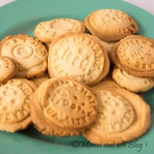 recept cookies mamameteenblog.nl