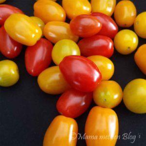 tomaten tomatoworld mamameteenblog