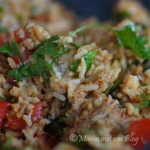 rijstsalade-mamameteenblog