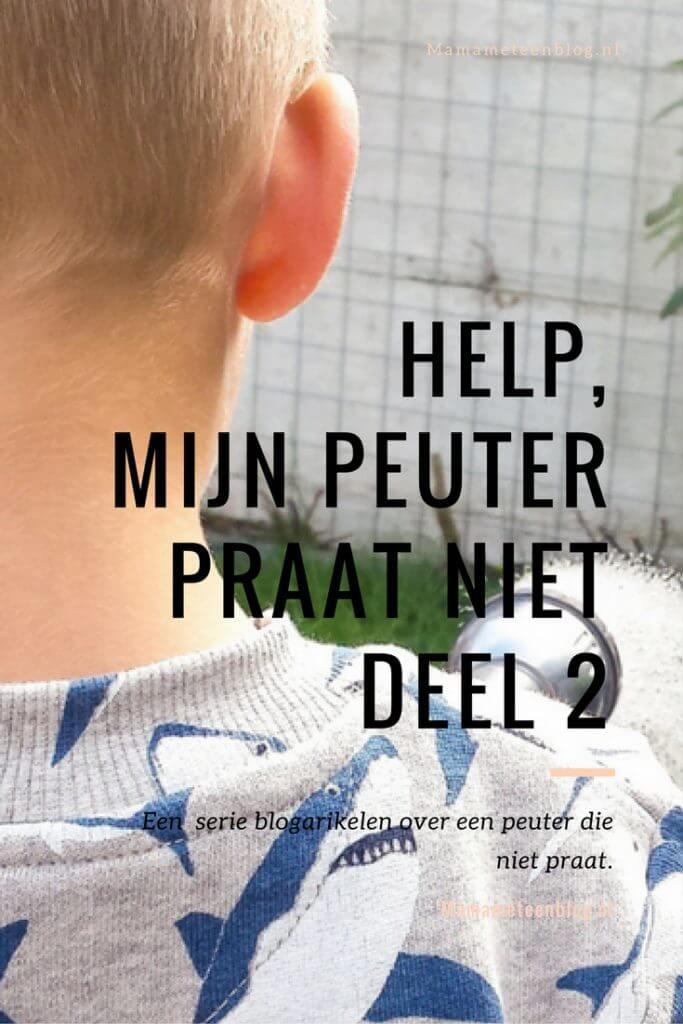 Mijn peuter praat niet deel 2 mamameteenblog.nl