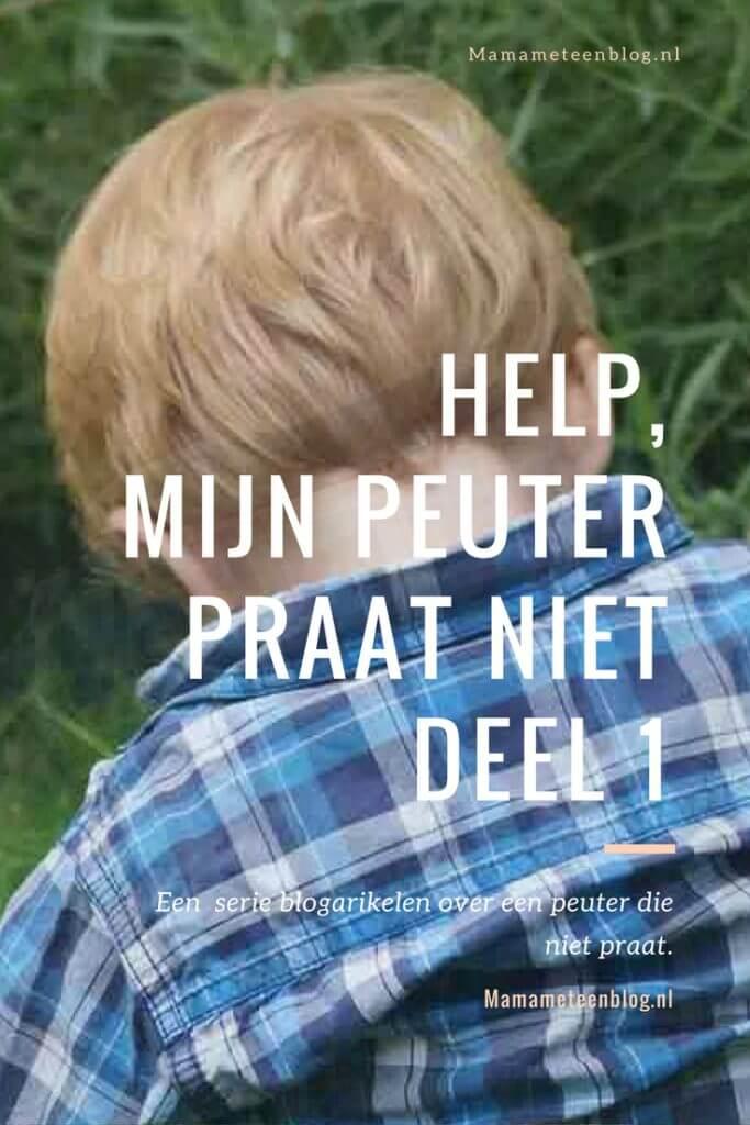 Mijn peuter praat niet deel 1 mamameteenblog.nl