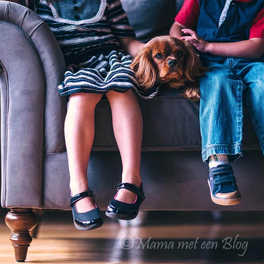 huisdier kind oppas pawshake mamameteenblog.nl