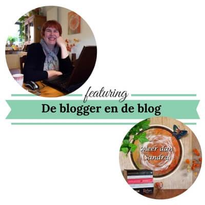 De blogger en de blog meerdansandra.nl mamameteenblog.nl