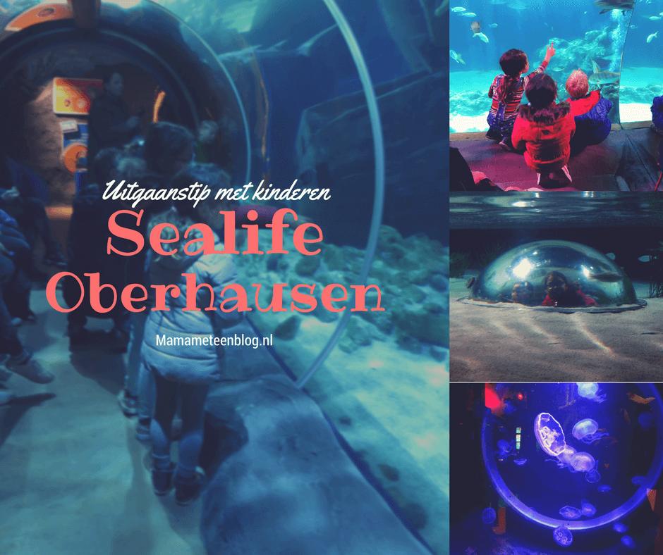 Sealife Oberhausen Uitgaanstip Mamameteenblog