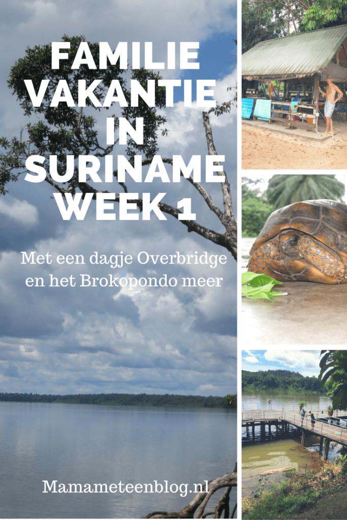 Familievakantie Suriname week 1  Mamameteenblog.nl