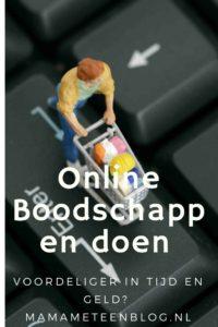 online boodschappen doen mamameteenblog