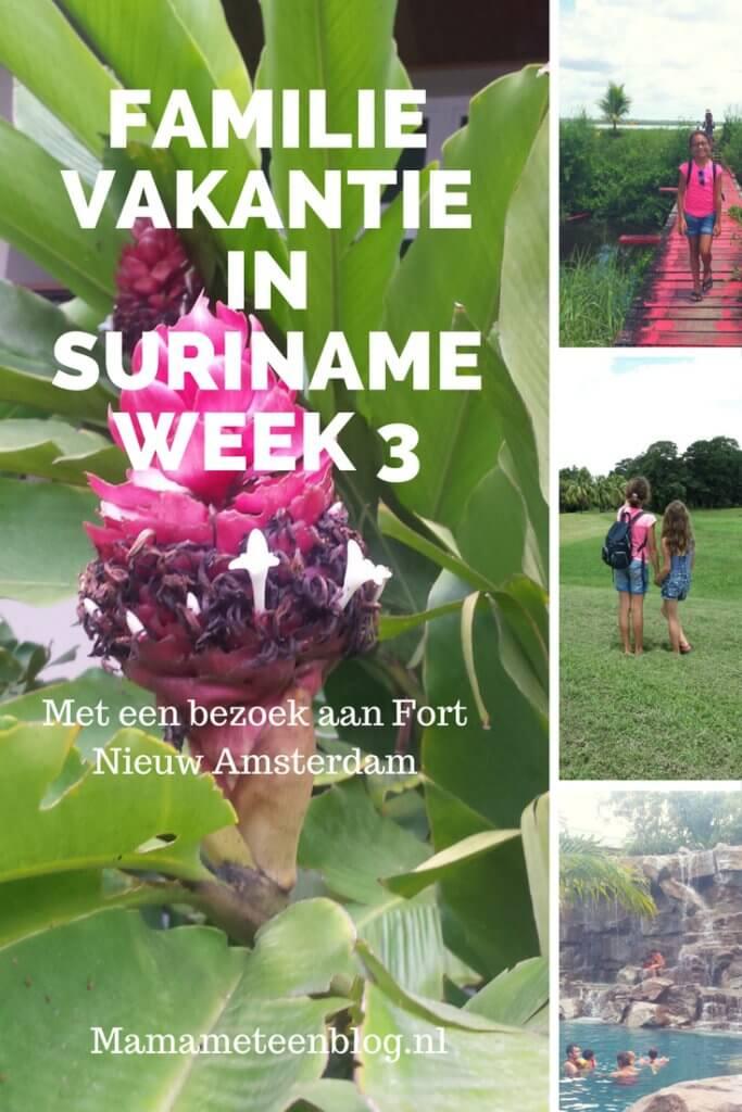 familievakantie suriname week 3 mamameteenblog.nl