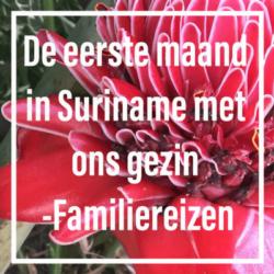 Suriname familiereis maand mamameteenblog.nl