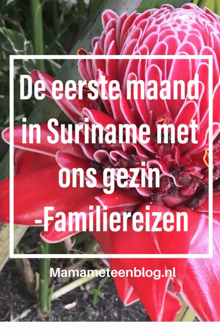 Familiereis Suriname maand mamameteenblog.nl