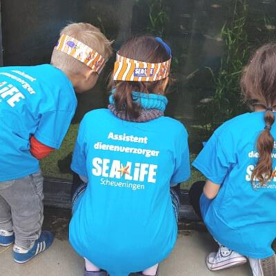 Uitgaanstip Sea life mamameteenblog.nl