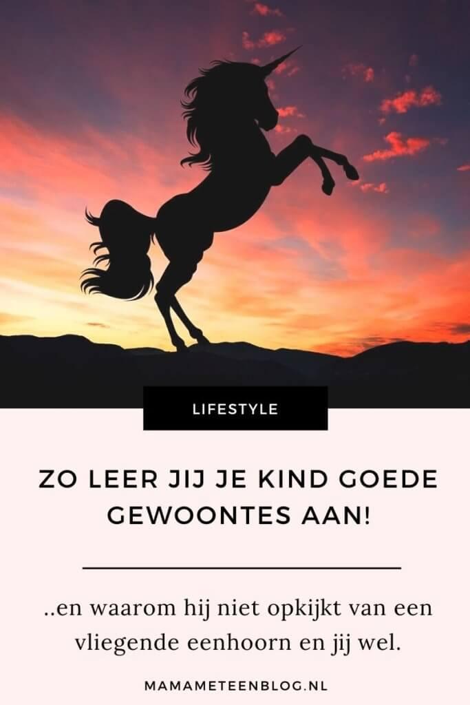 leer je kind goede gewoontes aan mamameteenblog.nl
