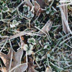 december-klusjes-winter-tuin-mamameteenblog.nl_