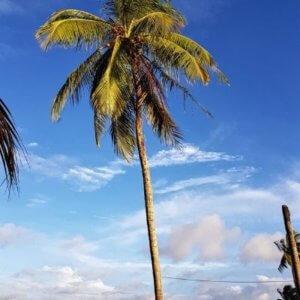 emigreren Suriname mamameteenblog.nl (1)