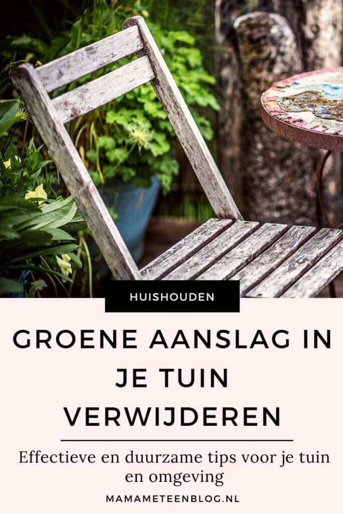 Groene aanslag in je tuin verwijderen mamameteenblog.nl