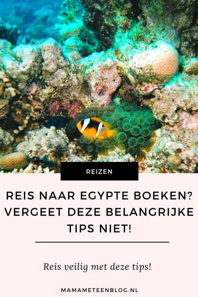 reis egypte boeken mamameteenblog.nl