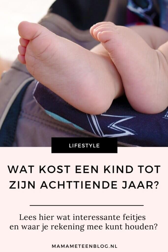 wat kost een kind mamameteenblog.nl