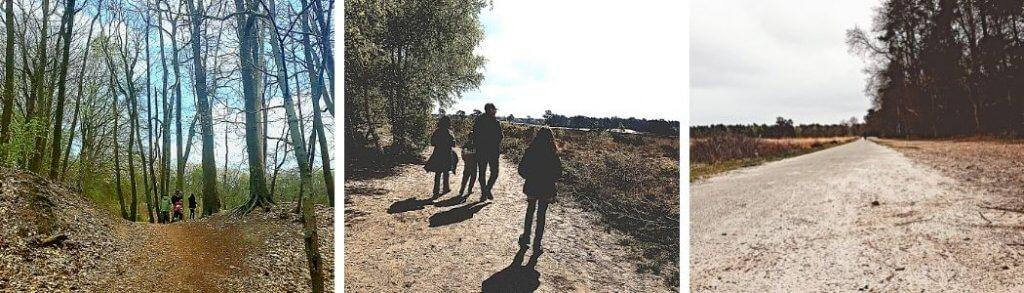 landal kaatsheuvel Loonse en drunense duinen Mamameteenblog.nl